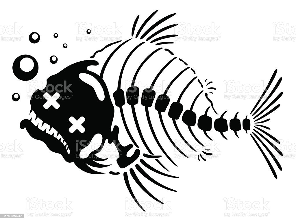 Line Art Of Fish : Dead fish stock vector art & more images of animal bone 579135402