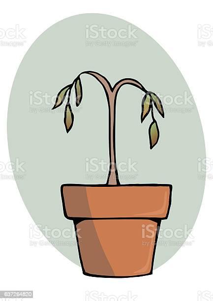 Dead plant vector id637264820?b=1&k=6&m=637264820&s=612x612&h= f kigrrn4kumwcbfv1ttqcwu4uhji6f8nkaeoujgus=