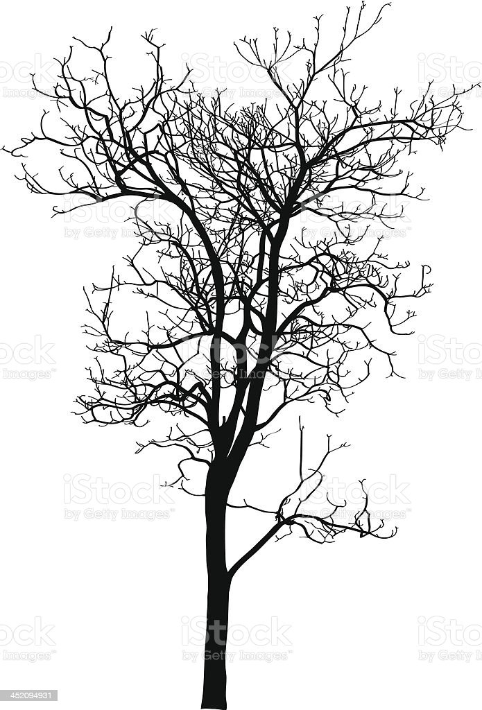 Dead Tree without Leaves Vector Illustration Sketched. royalty-free stock vector art