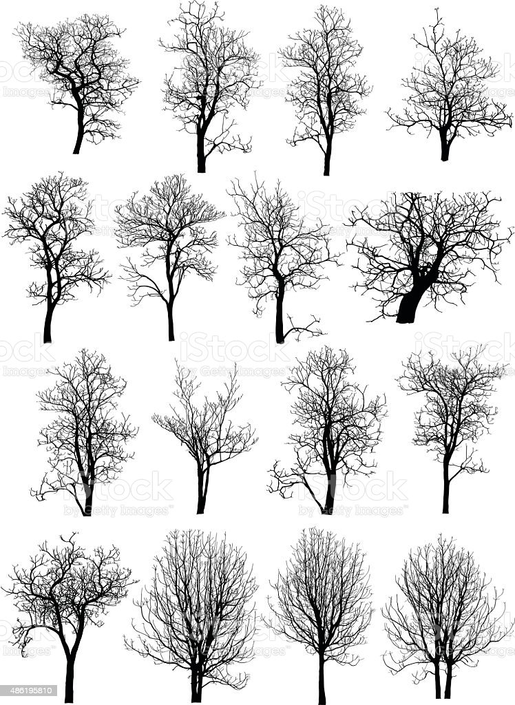 Dead Tree without Leaves Vector Illustration Sketched vector art illustration