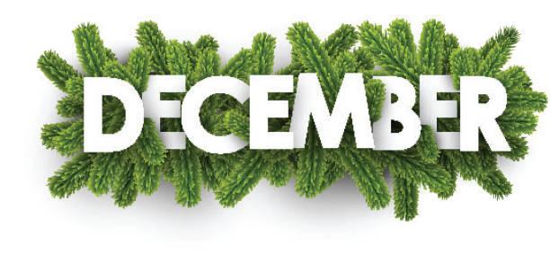 stockillustraties, clipart, cartoons en iconen met december banner met spar takken. - december