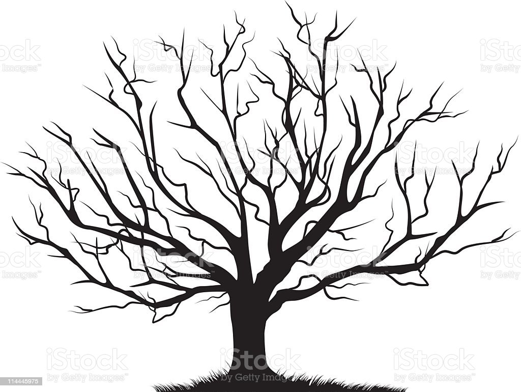 Deciduous Bare Tree Empty Branches Black Silhouette vector art illustration