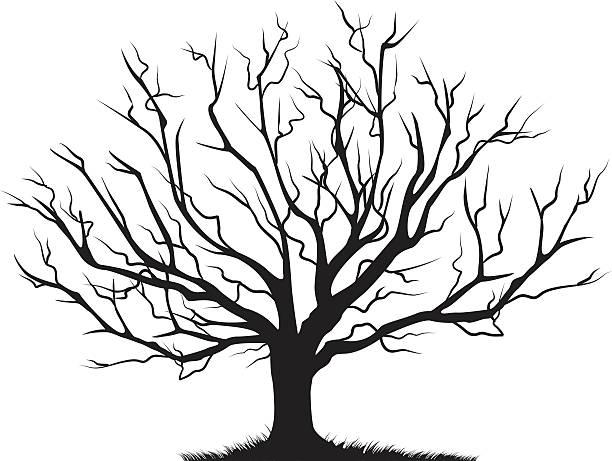 laubwälder kahler baum leere filialen schwarze silhouette - winterruhe stock-grafiken, -clipart, -cartoons und -symbole