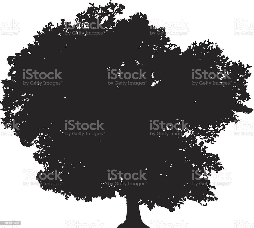 Deciduous tree silhouette vector vector art illustration