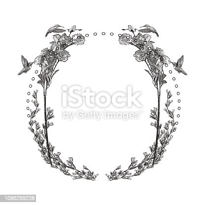 Engraved Decorative circle frame with hummingbirds and flowers
