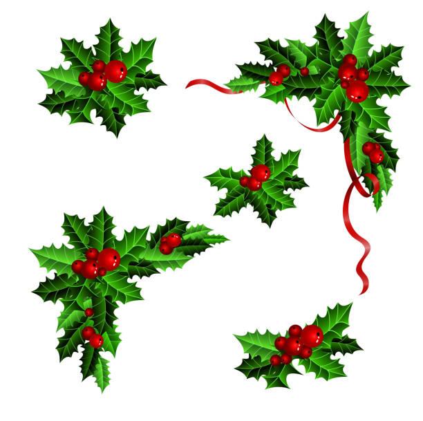 Christmas Greenery Vector.Christmas Greenery Clip Art Cs19 Advancedmassagebysara