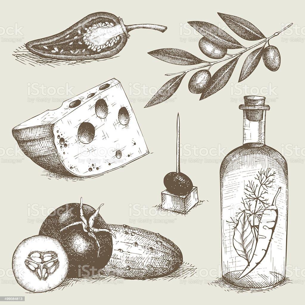 Decorative engraved food vector art illustration
