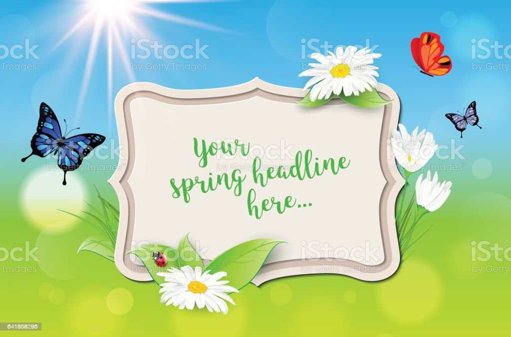 Decorative Frame With Spring Background Plants Daisy Flowers