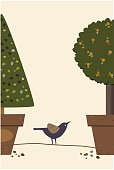 EPS-10, Vector Illustration, Garden Tree in pots and Bird