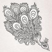 Decorative hand drawn peacock