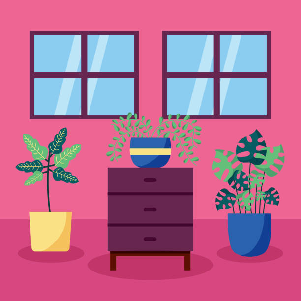decorative house plants interior design vector art illustration