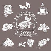 Decorative icons set cocoa. Vector Vintage Illustration.