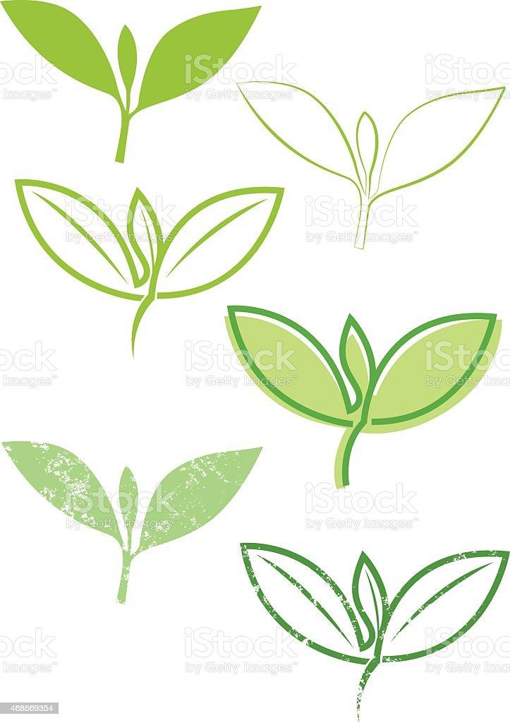 Decorative leaf tip illustration vector art illustration