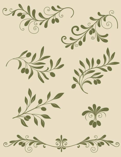 Decorative olive branch Vector vintage decorative olive branch olive branch stock illustrations