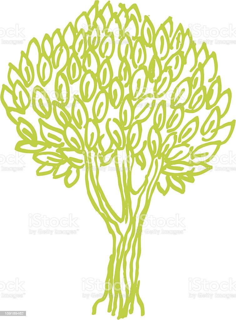 decorative olive tree royalty-free stock vector art