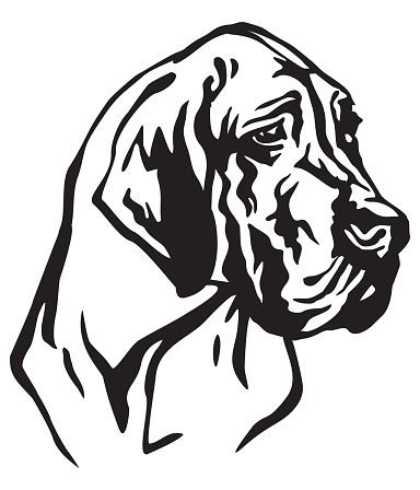 Decorative portrait of Dog Great Dane vector illustration