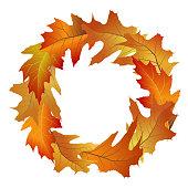 Wreath of fallen oak tree leaves. Vector illustration
