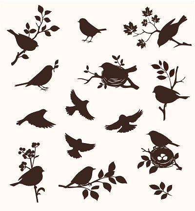 Decorative set of spring bird and twig silhouettes, flying birds and on the nest.