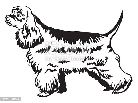 istock Decorative standing portrait of American Cocker Spaniel vector illustration 1221618520