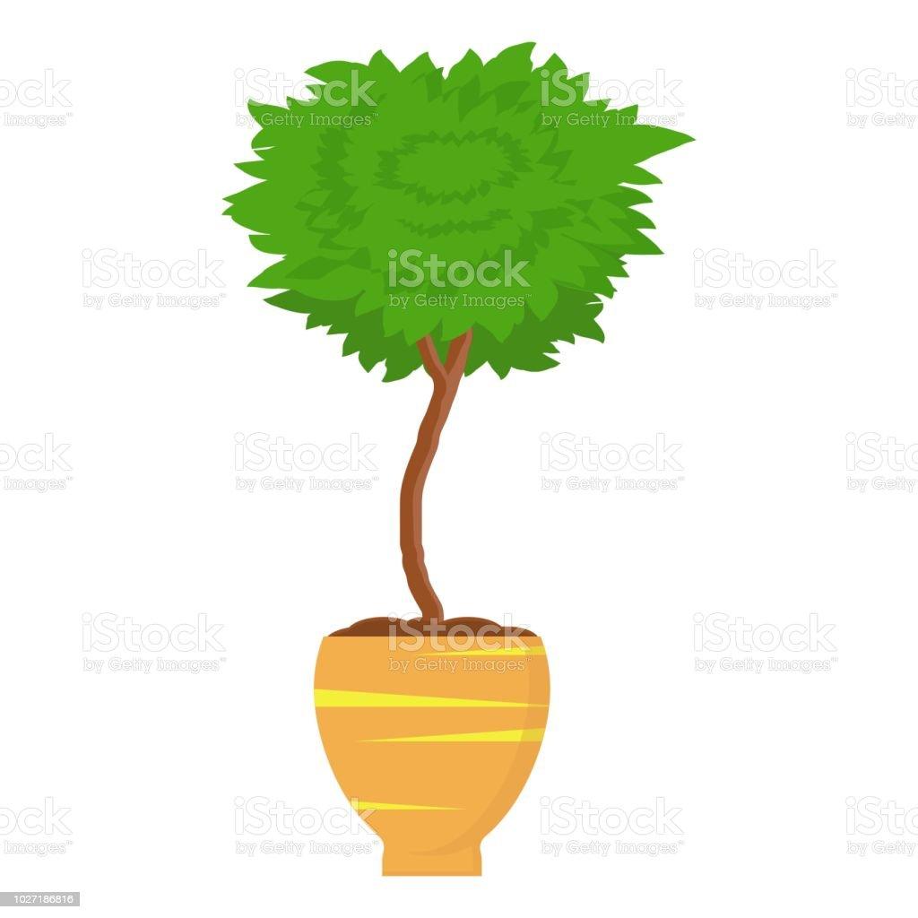coupe décorative extérieure planter arbre en pot plante de jardin