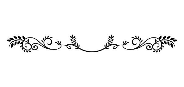 decorative vintage border illustration (natural plant)