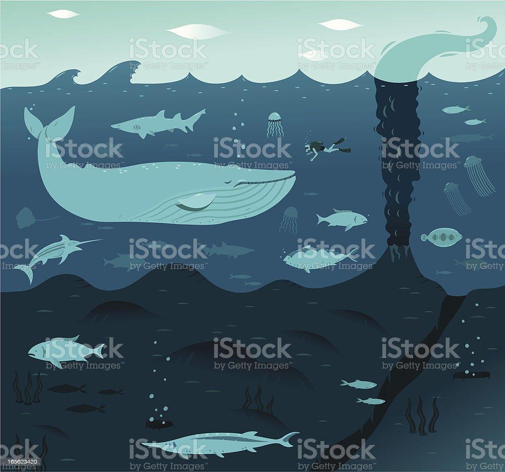 Deep Blue Whale vector art illustration