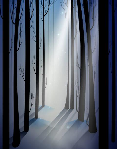 deep fairy frosty winter forest with mistery light beam, shadows, fairy winter woods, deep fairy frosty winter forest with mistery light beam, shadows, fairy winter woods, vector mistery stock illustrations