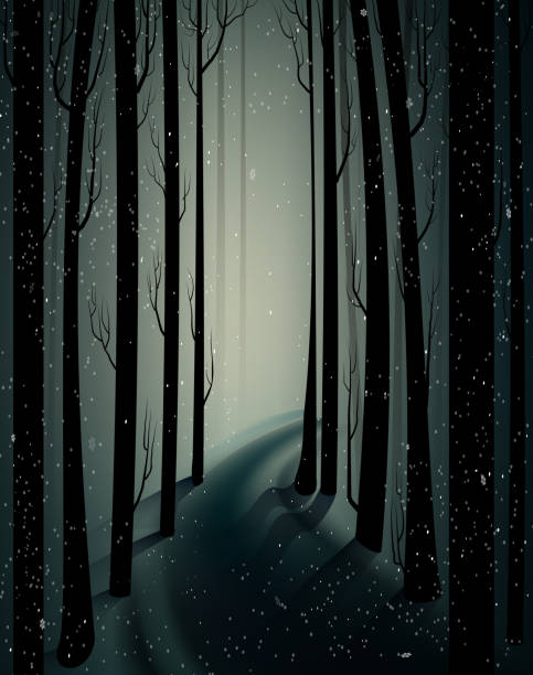 deep fairy frosty winter forest with mistery light, shadows, sullen winter forest, scared cold frosty woods, deep fairy frosty winter forest with mistery light, shadows, sullen winter forest, scared cold frosty woods, vector mistery stock illustrations