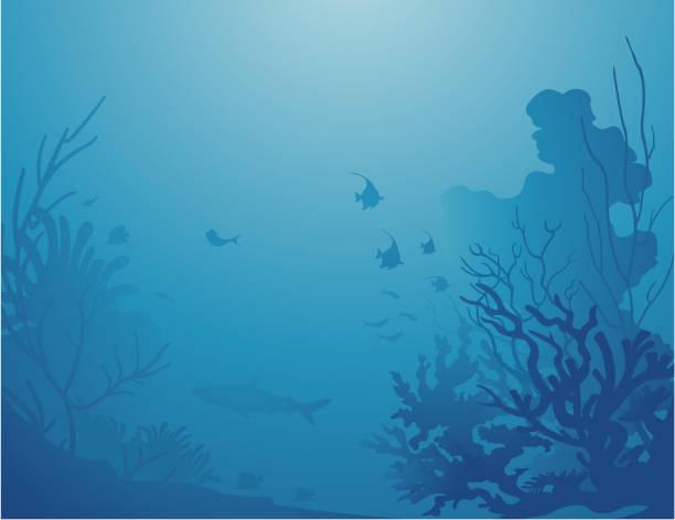 Deep sea Backgrounds / Décor sous la mer Silhouette of various corals ans tropical fishes deep in the sea. Des silhouettes de coraux et de poissons tropicaux sous une mer paisible. undersea stock illustrations
