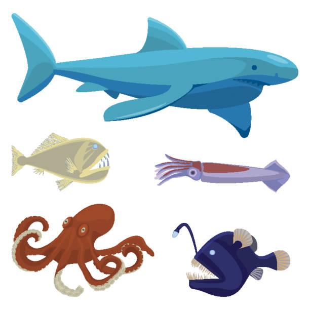 tiefsee gefährlich ungewöhnlichen kreaturen isoliert illustrationen satz - kalamar stock-grafiken, -clipart, -cartoons und -symbole