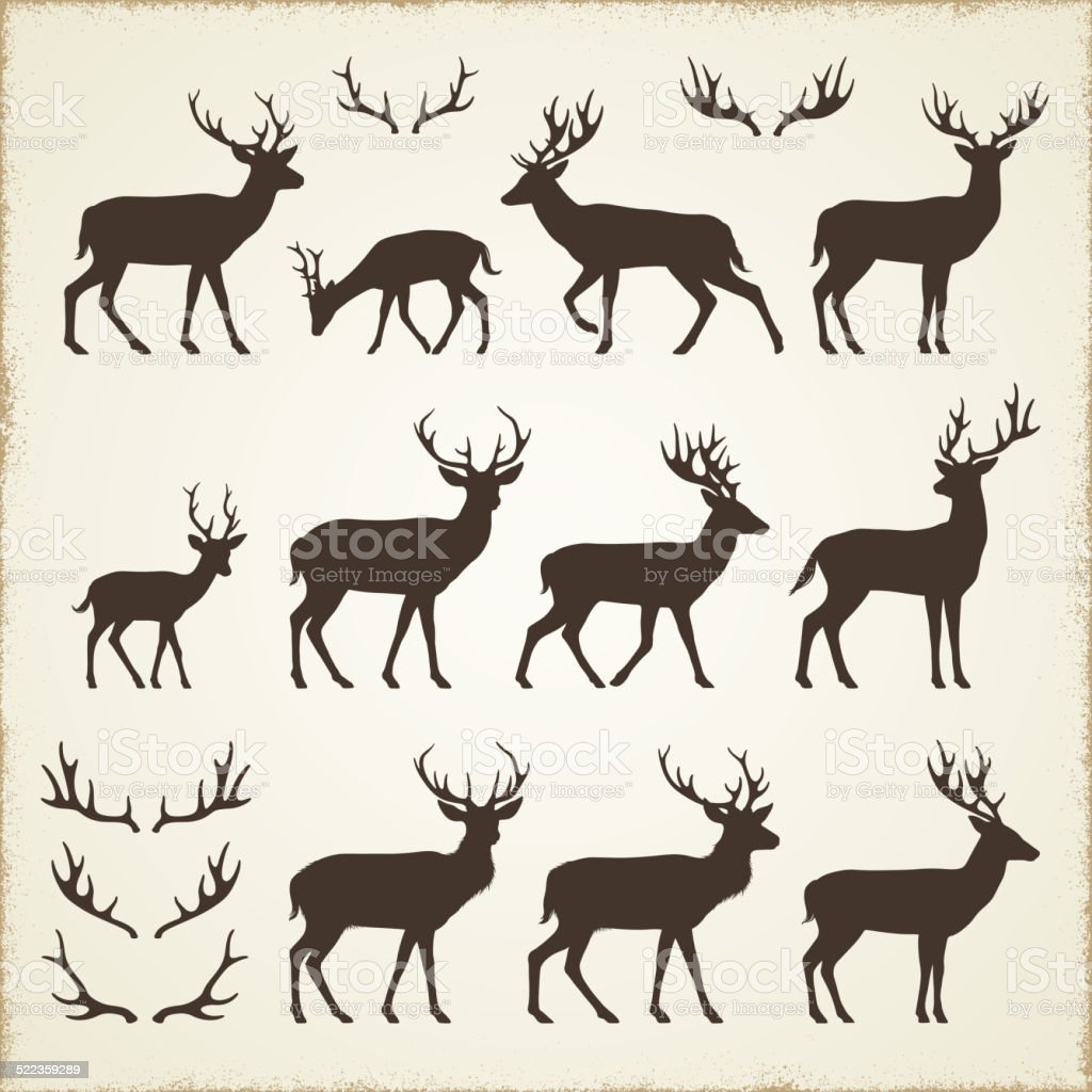 Deer and Antler Silhouettes vector art illustration