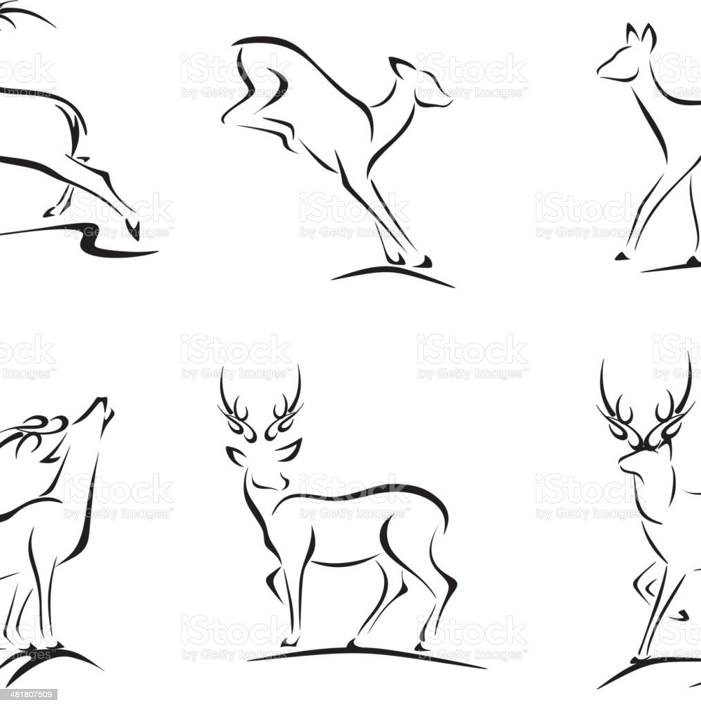 Esquisses et cerf Buck - Illustration vectorielle