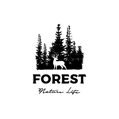 Deer and Pine Cedar Spruce Fir Conifer Forest Silhouette Wilderness Adventure logo design