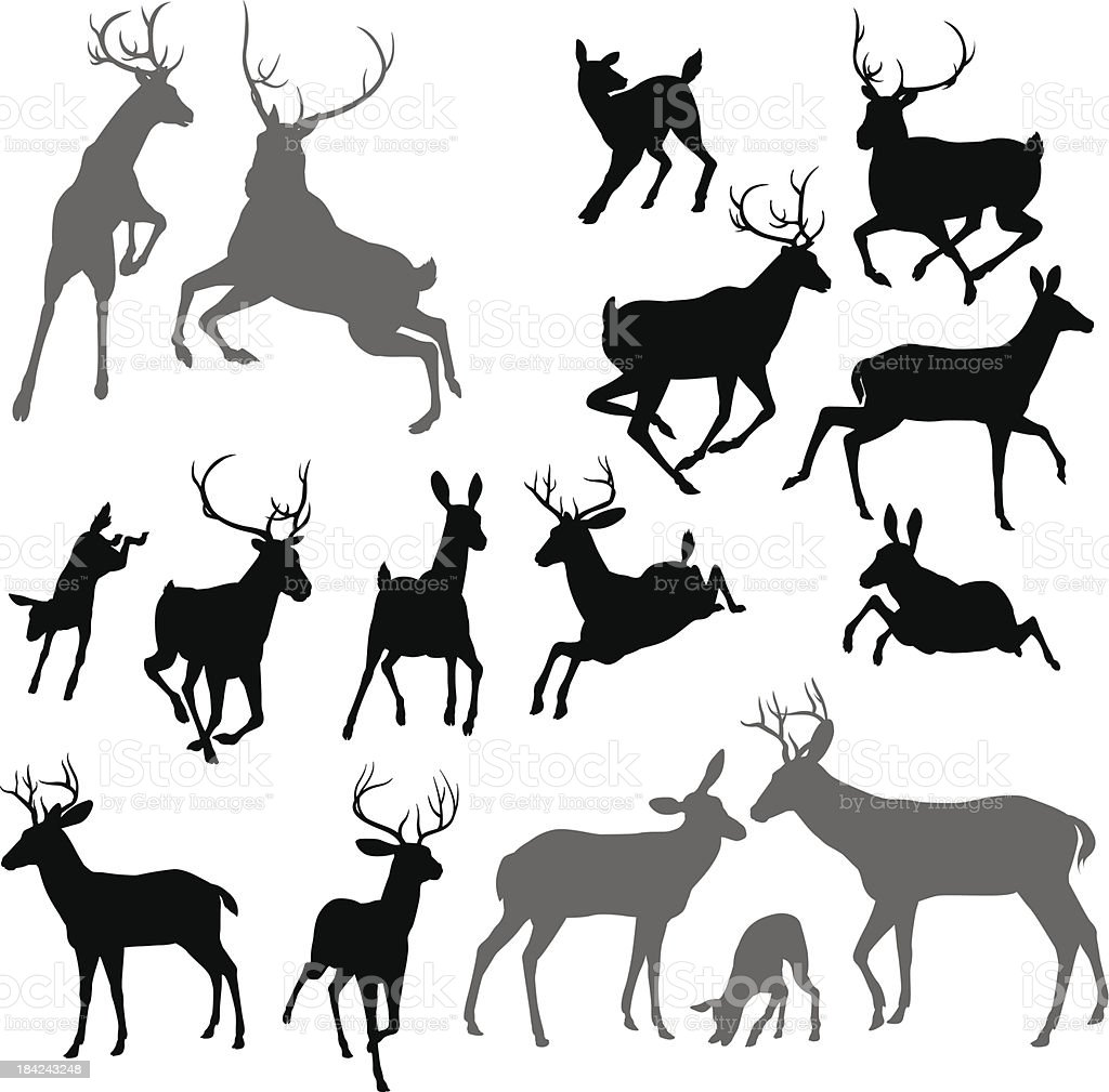 Cerfs silhouettes d'animaux - Illustration vectorielle