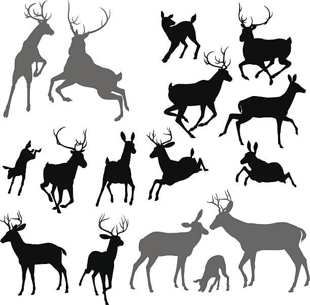deer animal silhouettes vector art illustration