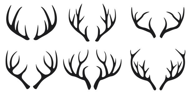 deer antlers black icons set on white background - reindeer stock illustrations