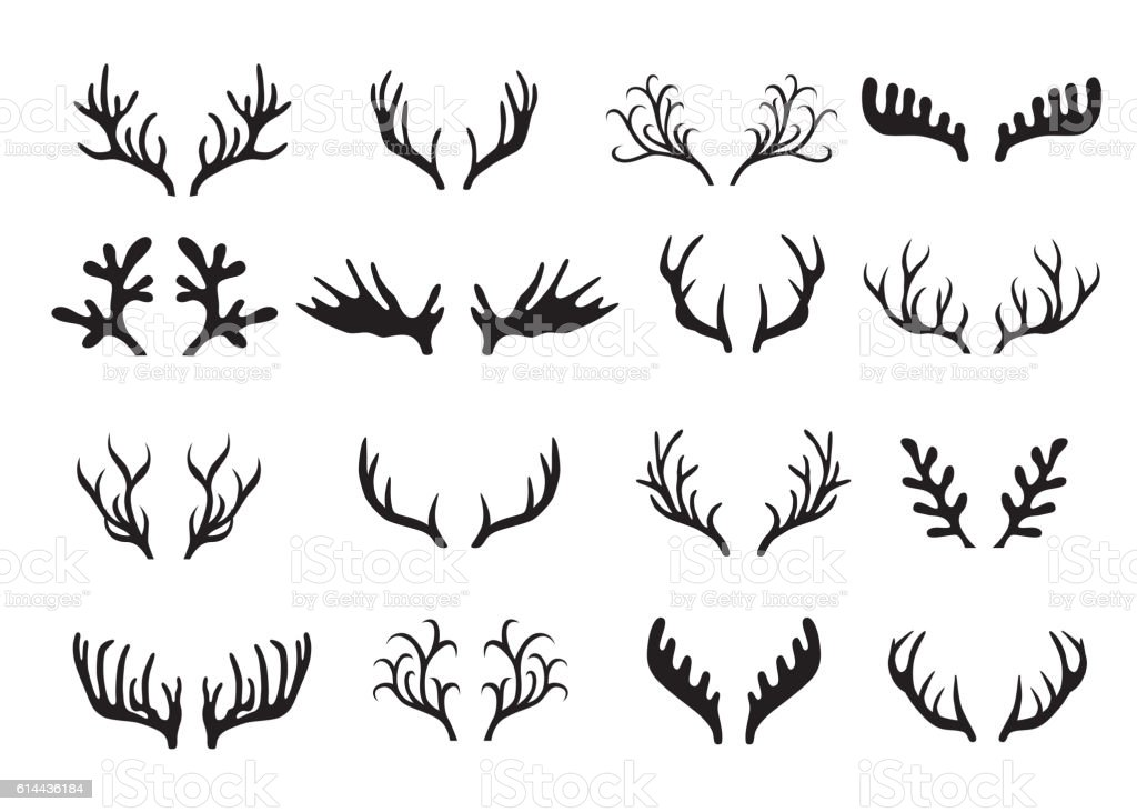 Deer antlers set isolated on white background. vector art illustration