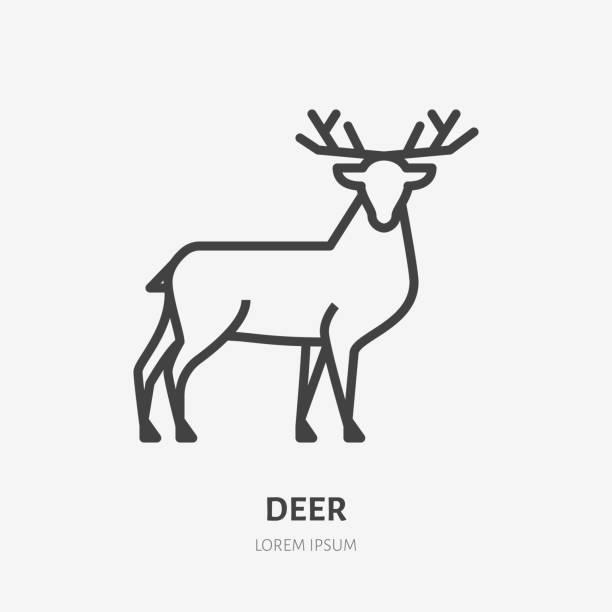 illustrations, cliparts, dessins animés et icônes de icône de ligne plate de cerf. signe mince de vecteur de renne, animal sauvage. illustration de contour pour le zoo - partie du corps d'un animal