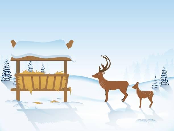 Best Deer Feeders Illustrations, Royalty-Free Vector
