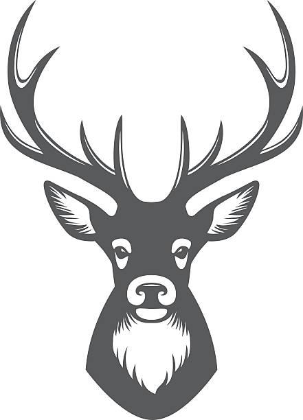 ilustraciones, imágenes clip art, dibujos animados e iconos de stock de deer de ilustración - reno mamífero