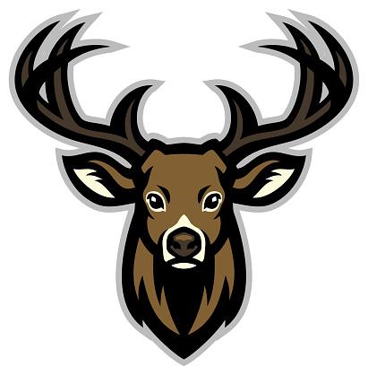 vector of Deer head mascot