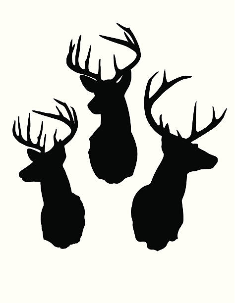 deer head silhouettes - deer antlers stock illustrations, clip art, cartoons, & icons