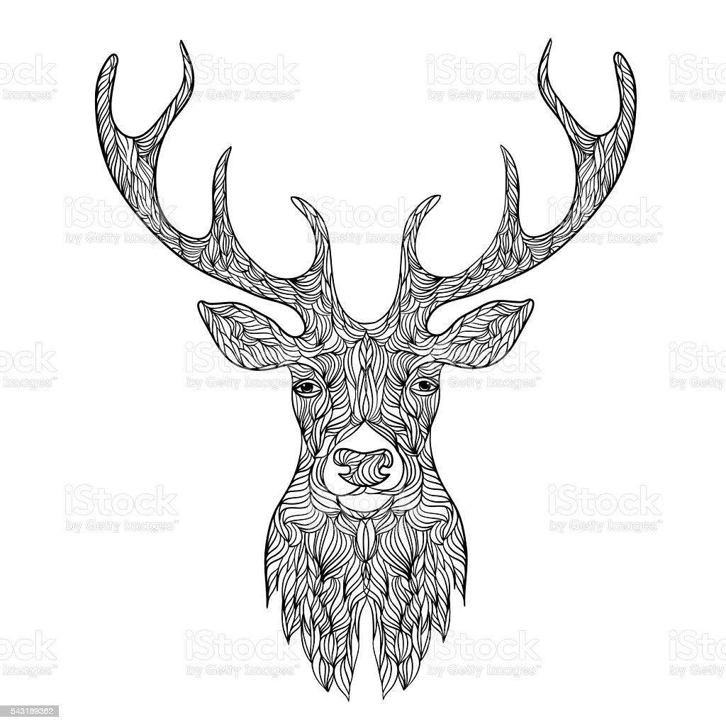 Deer head stylized in doodle style. vector art illustration