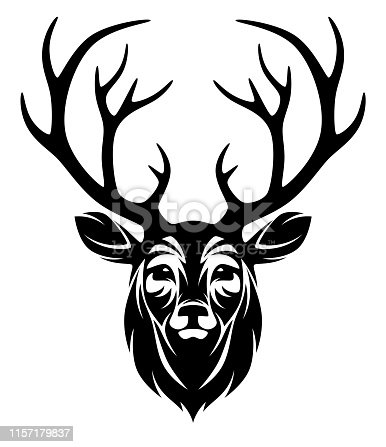 Deer head a white background