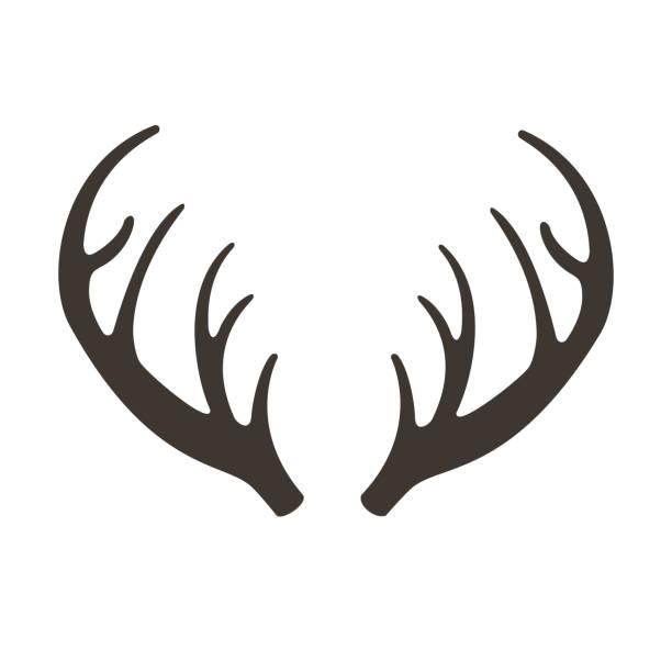 bildbanksillustrationer, clip art samt tecknat material och ikoner med deer horn vektor illusrtation. antlers vektor silhuett ikonen. jakttroféer. renar - älg sverige