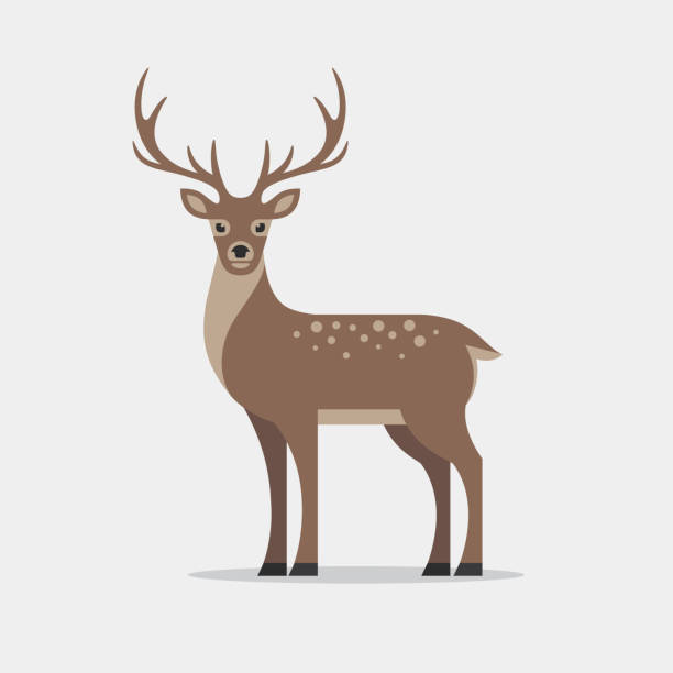 deer illustration in flat style. - reindeer stock illustrations
