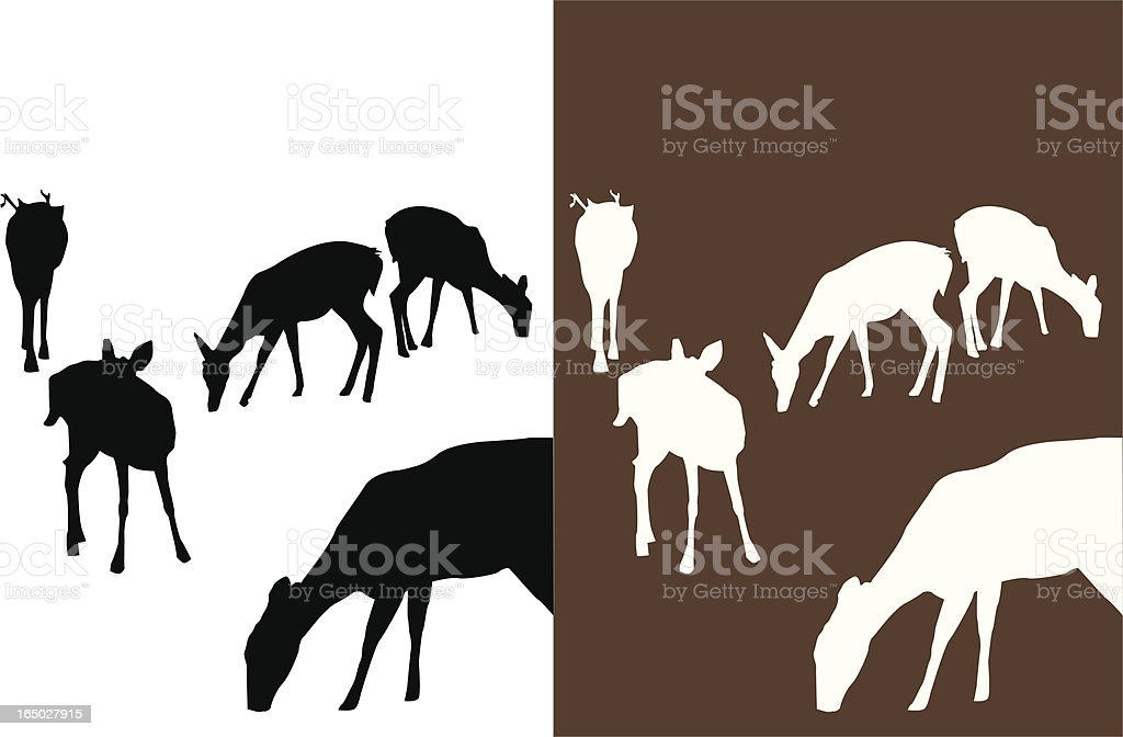 Deer in Park royalty-free stock vector art