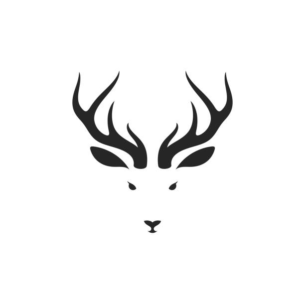 hirsch. isoliertes tier auf weißem hintergrund - rentier stock-grafiken, -clipart, -cartoons und -symbole