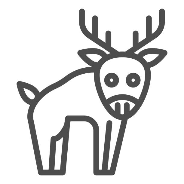 Deer line icon. Horned wild forest animal silhouette. Animals vector design concept, outline style pictogram on white background, use for web and app. Eps 10. Deer line icon. Horned wild forest animal silhouette. Animals vector design concept, outline style pictogram on white background, use for web and app. Eps 10 hoofed mammal stock illustrations