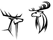 Wild deers with big antlers for mascot, tatttoo or hunting design
